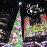 佳節聖誕樹